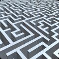 迷宫脑的挑战
